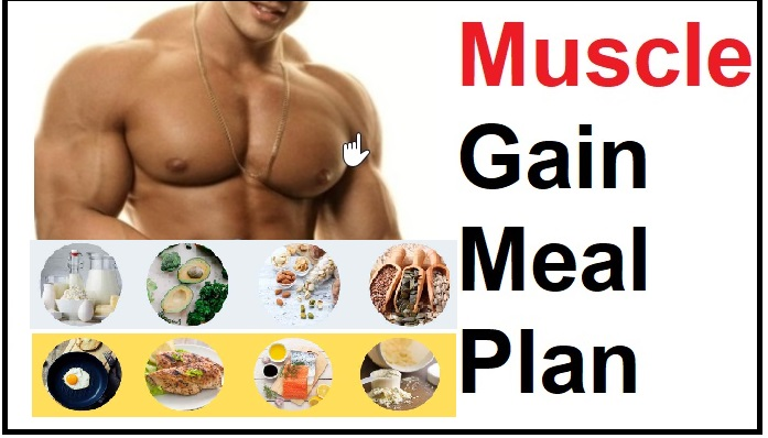 Muscle Gain Meal